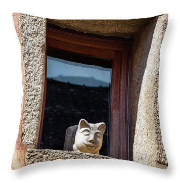 A Cat On Hot Bricks Throw Pillow