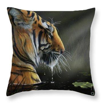 A Chance Encounter II Throw Pillow