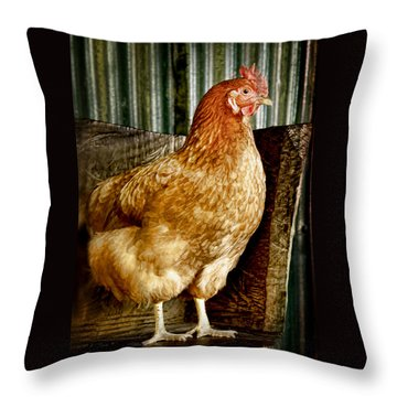 A Chicken Named Rembrandt Throw Pillow