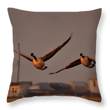 A Cinematic Moment Throw Pillow