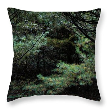 A Clearing In The Wild Throw Pillow