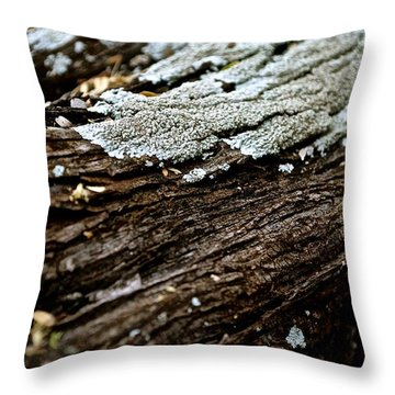 A Closer Look V2 Throw Pillow