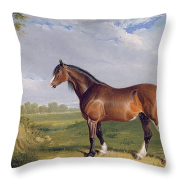 A Clydesdale Stallion Throw Pillow by John Frederick Herring Snr