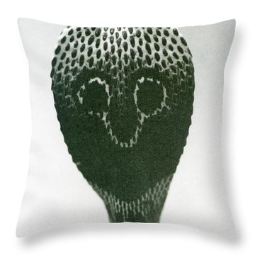 A Cobra With Raised Head And Flared Hood  Throw Pillow