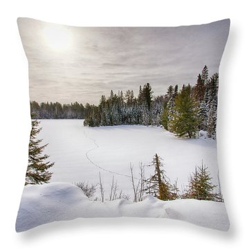 A Cold Algonquin Winters Days  Throw Pillow