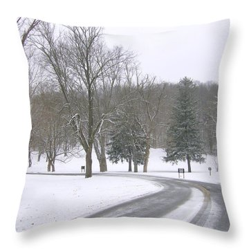 Throw Pillow featuring the photograph A Cold Winter's Day by Skyler Tipton