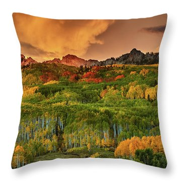 Throw Pillow featuring the photograph A Colorado Autumn Along Kebler by John De Bord