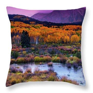 Throw Pillow featuring the photograph A Colorado Fall Along Kebler Pass by John De Bord