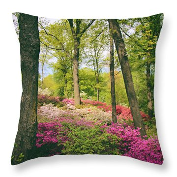 A Colorful Hillside Throw Pillow