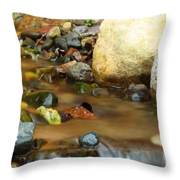 A Colorful Stream Throw Pillow