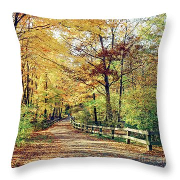 A Colorful Walk Throw Pillow
