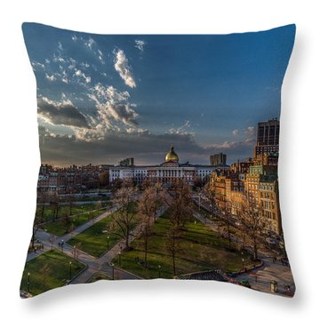 A Common Sunset Throw Pillow