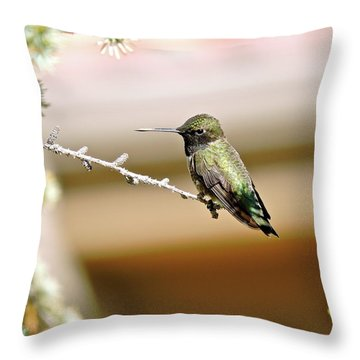 A Contented Hummer Throw Pillow