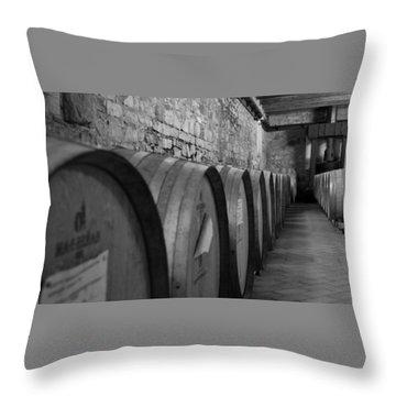 A Cool Dry Cellar Throw Pillow