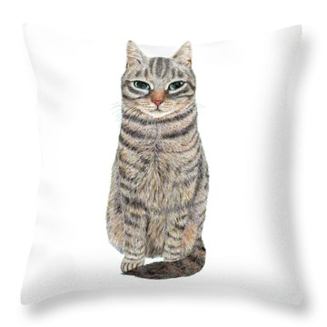 A Cool Tabby Throw Pillow