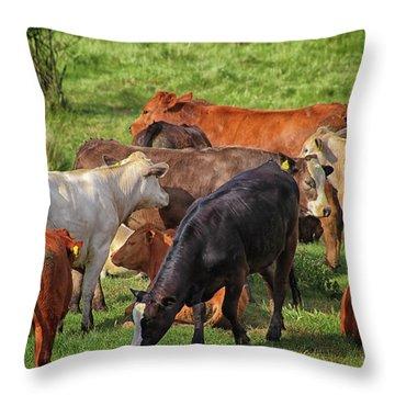 A Cows Backside Throw Pillow