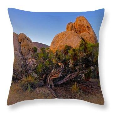 A Crazy Juniper Throw Pillow