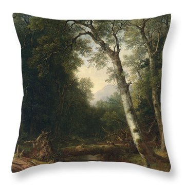 A Creek In The Woods Throw Pillow