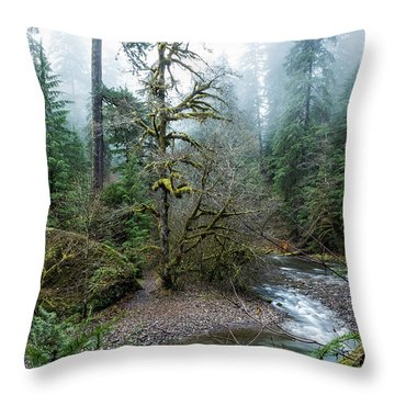 Throw Pillow featuring the photograph A Creek Runs Through It by Belinda Greb