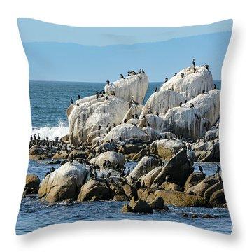A Crowded Bird Rock Throw Pillow