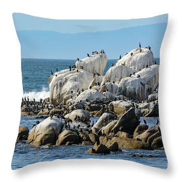 A Crowded Bird Rock Throw Pillow