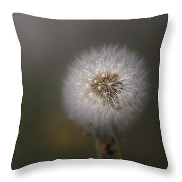 Throw Pillow featuring the photograph A Dandelion by Lora Lee Chapman