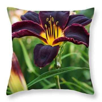 Throw Pillow featuring the photograph A Dark Purple Tiger Lilly by B Wayne Mullins