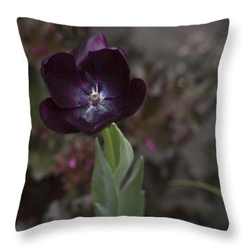 A Dark Richness Throw Pillow