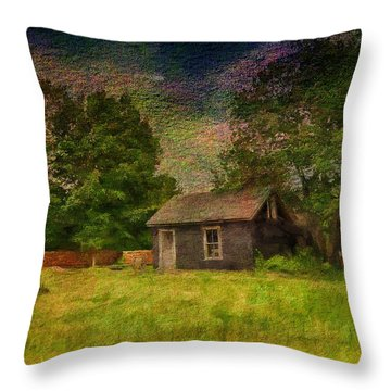 A Day At The Farm Throw Pillow by Tricia Marchlik
