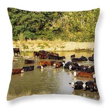 A Day At The Spa Throw Pillow by Cricket Hackmann