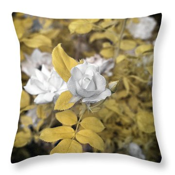 A Day In The Garden Throw Pillow by Paul Seymour