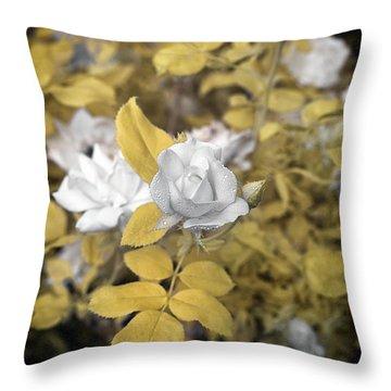 A Day In The Garden Throw Pillow