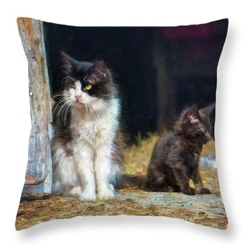 A Day In The Life Of A Barn Cat Throw Pillow