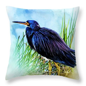 A Day In The Marsh Throw Pillow by Cyndy Doty