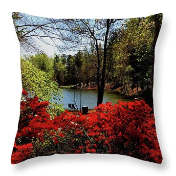 A Day In The Park Throw Pillow by James C Thomas