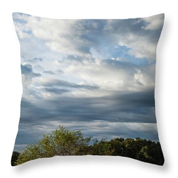 Throw Pillow featuring the photograph A Day In The Prairie by Iris Greenwell