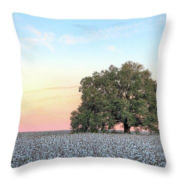 Andalusia Throw Pillows
