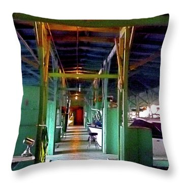A Delta Boat Shed Throw Pillow