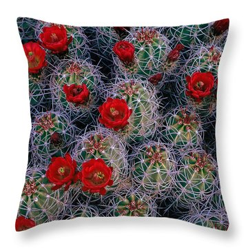 A Desert Rose Garden Throw Pillow