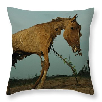 A Desiccated Horse Carcass Propped Throw Pillow