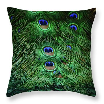 A Different Point Of View Throw Pillow by Elaine Malott