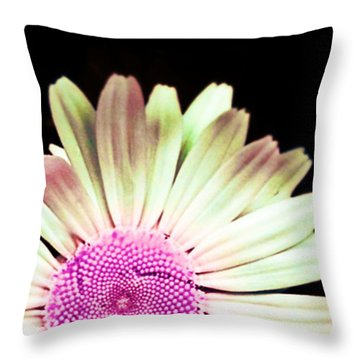 A Different Shade Of Michaelmas Throw Pillow