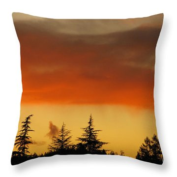 A Distant Rain Throw Pillow