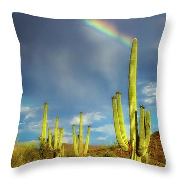 A Divine Touch Throw Pillow