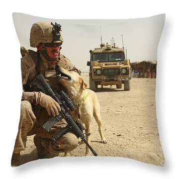 A Dog Handler Posts Security With An Throw Pillow by Stocktrek Images