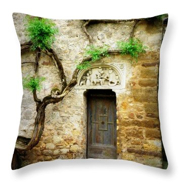 A Door In The Cloister Throw Pillow