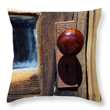 A Door To The Past Throw Pillow