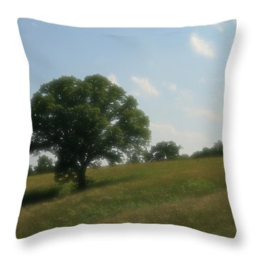 A Dreamy Day Throw Pillow