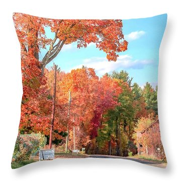 A Drive In The Country Throw Pillow