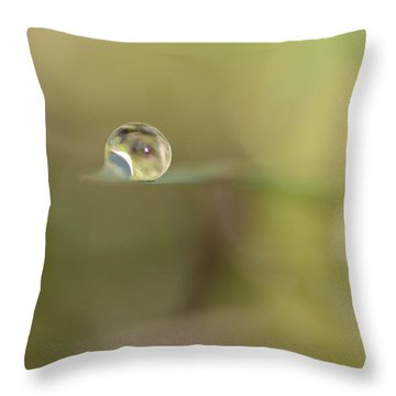 A Drop Of Subtlety Throw Pillow